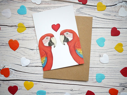 Illustrated valentine's day card featuring two scarlet macaws and a heart by Silverpasta Crafts