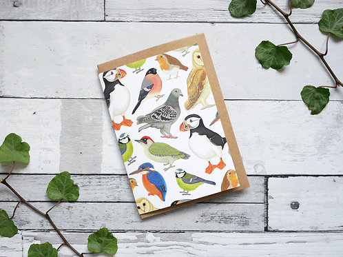 Silverpasta illustrated animal greetings card made from recycled paper featuring british birds with plastic free packaging