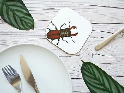 Silverpasta illustrated animal 10cm coaster featuring stag beetle