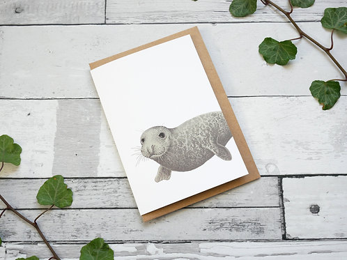 Silverpasta illustrated animal greetings card made from recycled paper featuring a grey seal with plastic free packaging