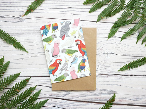 Illustrated parrots blank greetings card made from 100% recycled card and plastic-free wrapper