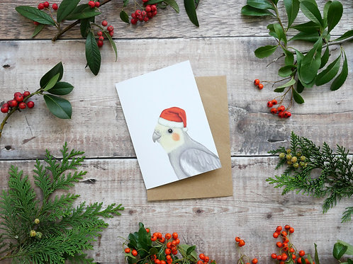 Illustrated cockatiel Christmas card made from recycled paper and eco friendly plastic-free wrapper