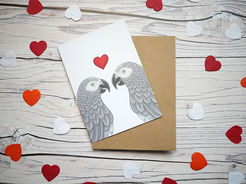 Illustrated valentine's day card featuring two african grey parrots with a red heart illustrated by Silverpasta Crafts