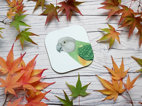 Senegal parrot illustrated coaster by Silverpasta Crafts