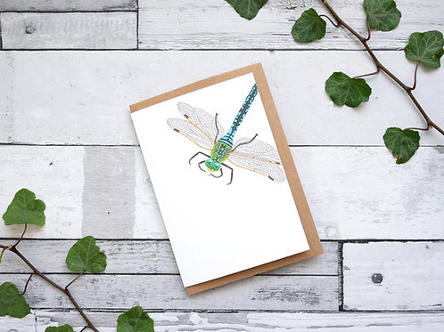 Silverpasta illustrated animal greetings card made from recycled paper featuring a blue dragonfly with plastic free packaging