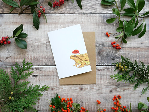Illustrated frog wearing a santa hat Christmas card made from recycled paper and eco friendly plastic-free wrapper