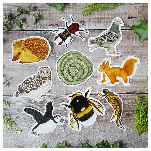 British wildlife sticker set