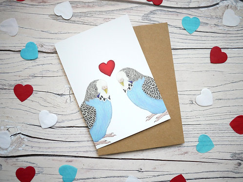 Illustrated valentine's day card featuring two blue budgies and a heart by Silverpasta Crafts