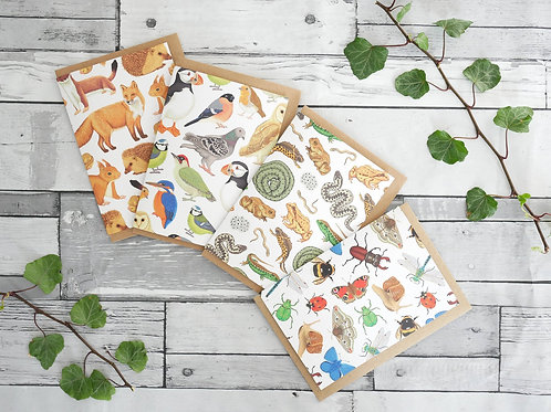 Silverpasta set of four british wildlife cards mammals birds reptiles amphibians and insects