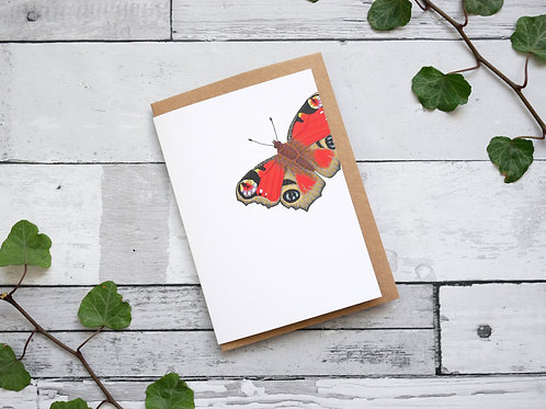 Silverpasta illustrated animal greetings card made from recycled paper featuring peacock butterfly plastic free packaging