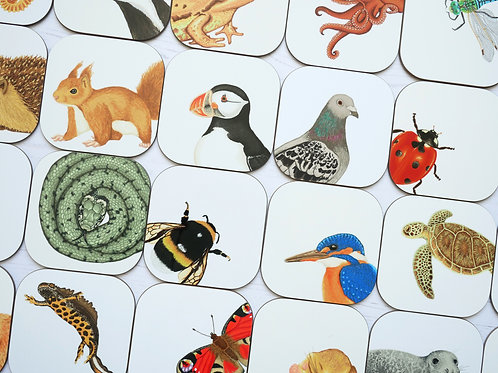 Silverpasta illustrated animal 10cm coaster mix and match choose your own wildlife gift set