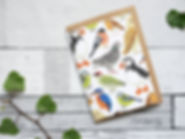 British birds greetings card