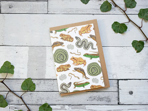 Silverpasta illustrated greetings card made from recycled paper british reptiles amphibians with plastic free packaging