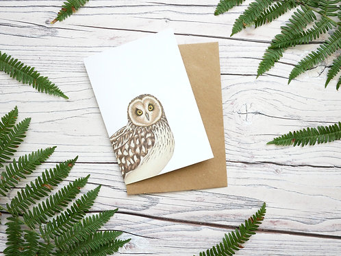 Short Eared Owl Greetings Card