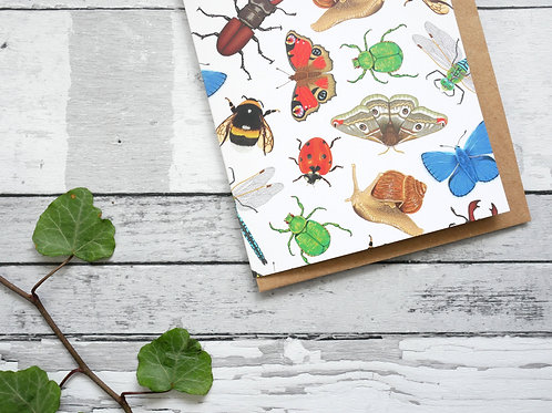 Silverpasta illustrated animal greetings card made from recycled paper featuring british insects with plastic free packaging