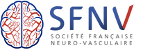 ESO_Logo_SFNV.png