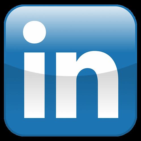 LinkedIn Ad Campaign