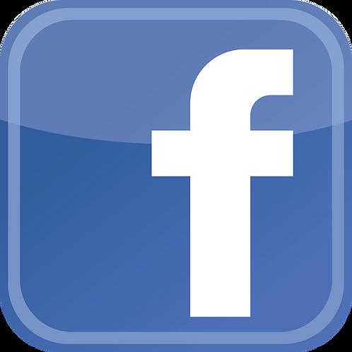 Facebook & Instagram Ad Campaign