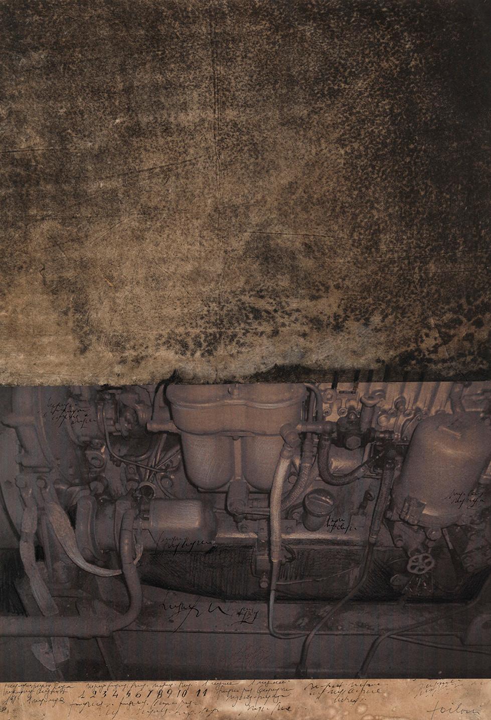 Ursus, 2009, tecnica mista su carta, cm 56,5 x 38,5