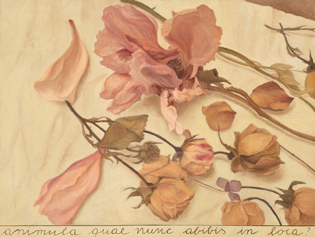 Animula, 2017, olio su carta su tela, cm 105 x 140