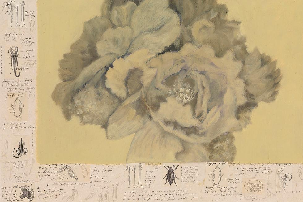 Senza titolo, 2011, olio collage inchiostro pastello, cm 35,5 x 54
