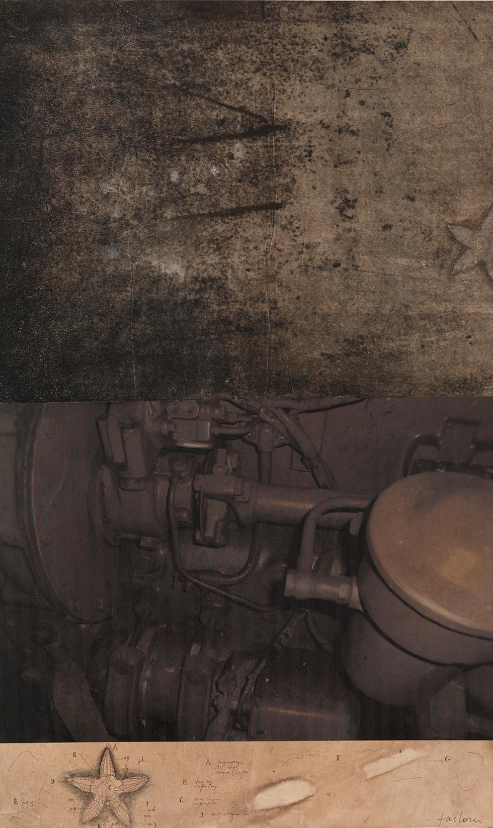 Ursus, 2009, tecnica mista su carta, cm 65 x 38,5
