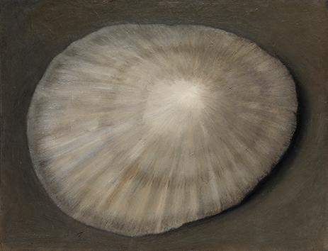 Senza titolo, 2008, olio su carta su tela, cm 30 x 39