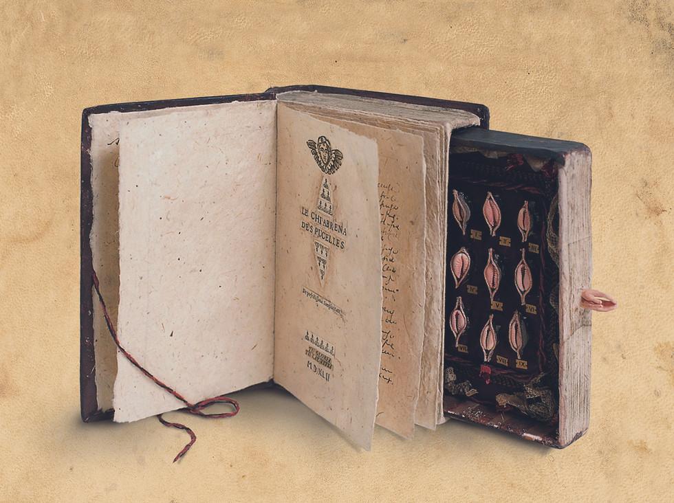 Le Chiabrena des Pucelles, 2003, carta conchiglie collages inchiostro pastello