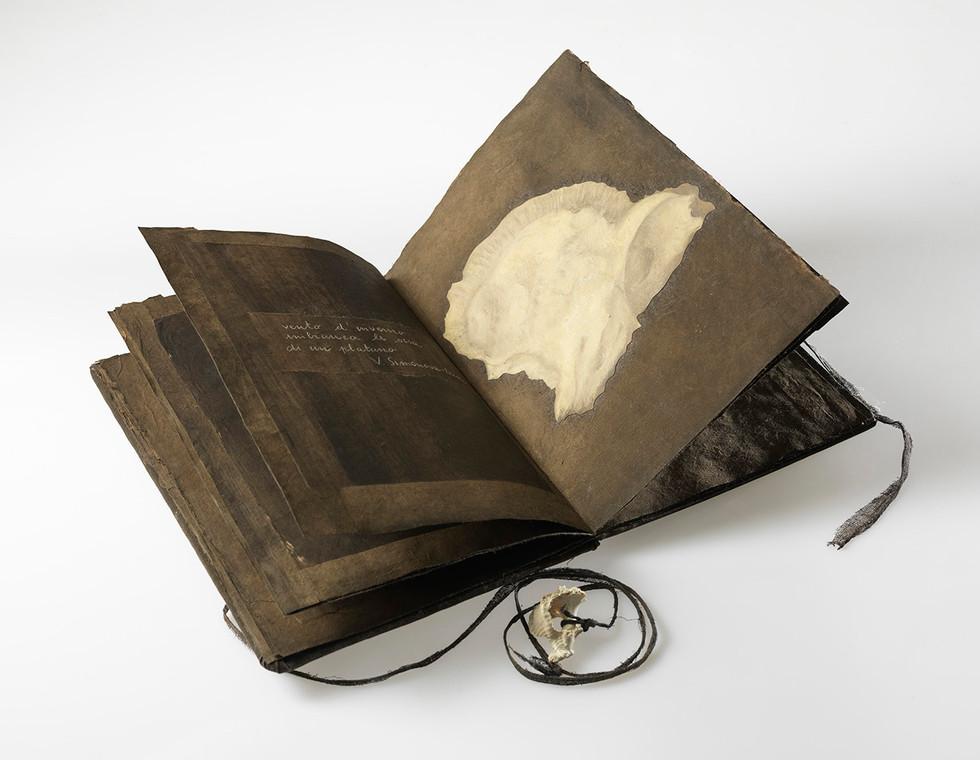 Sorelle ossa, 2019, carta olio su carta spago conchiglia, cm 32 x 24 x 1,8