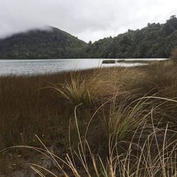 Lake Rotopounamu #tokaanulodgemotel