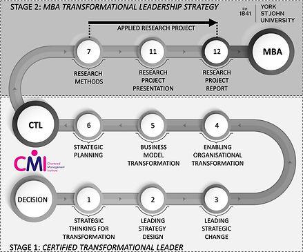 Transforming Leaders Programme Timeline.