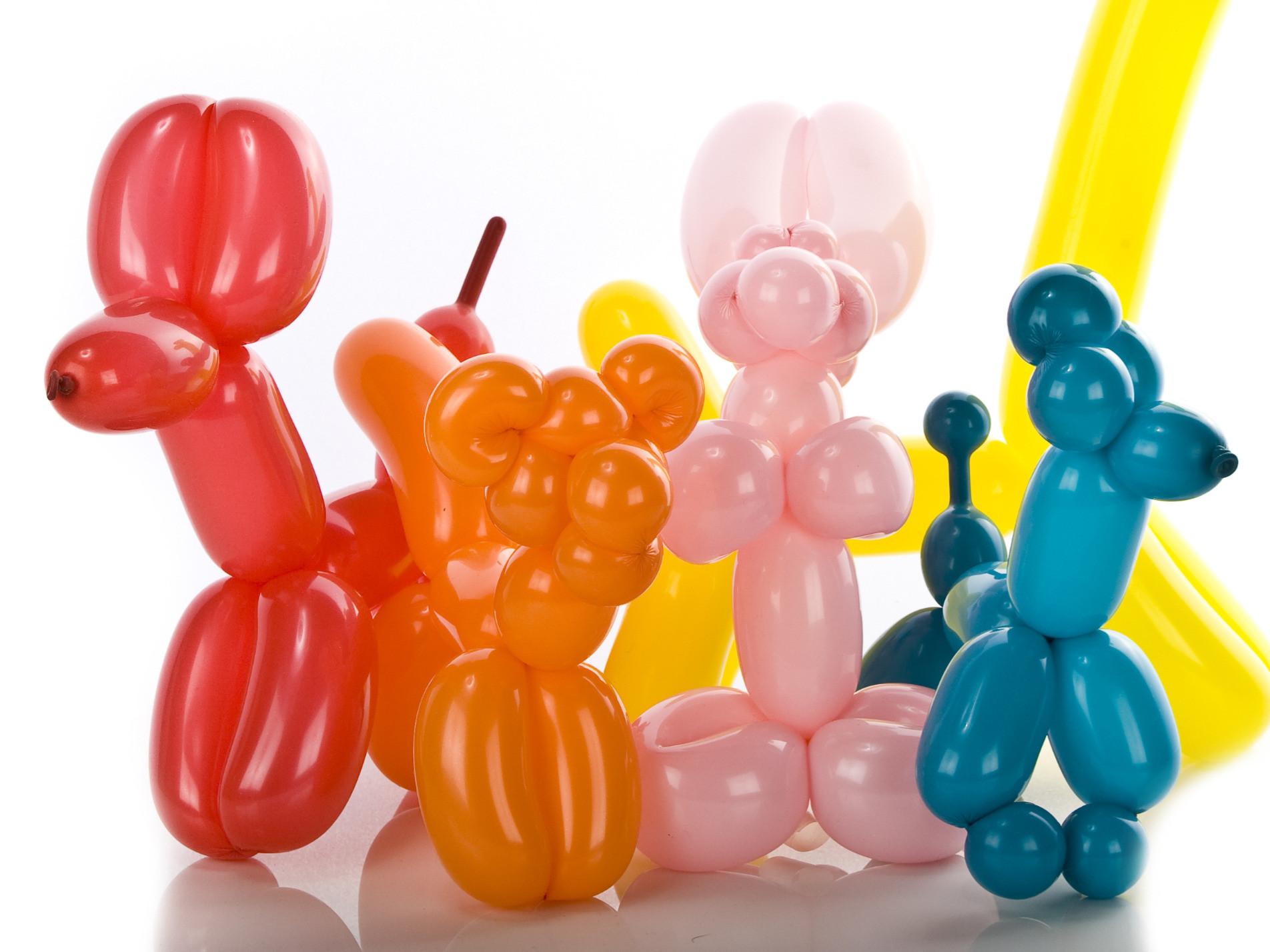 Balloon Twisting for 15-20 children