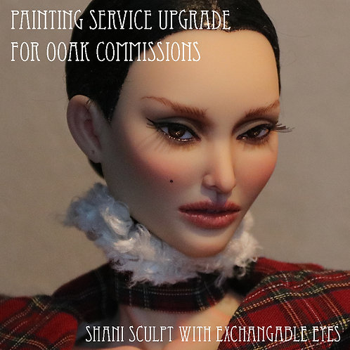 Painting Upgrade Service
