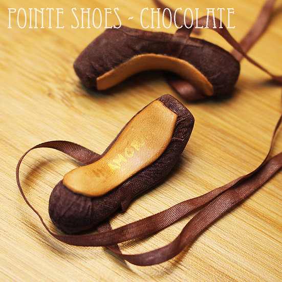 Ballet Pointe Shoes - Silk