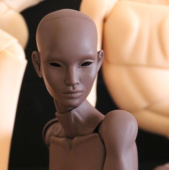 Basic Doll (Blank)