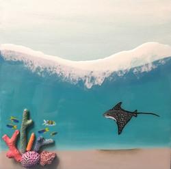 Manta Below the Surface
