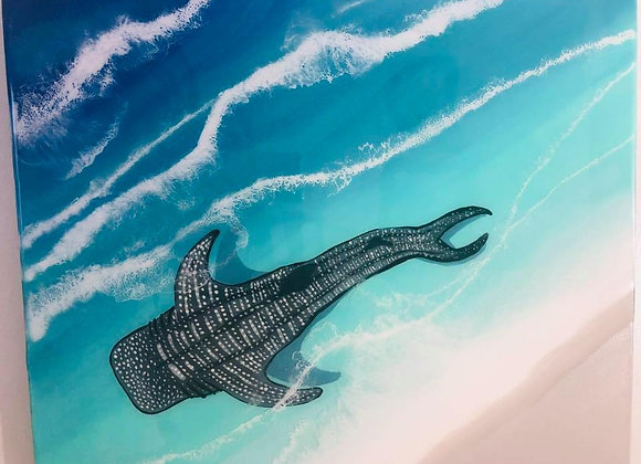 Whale Shark by the Shore