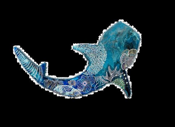 Whale Shark Reef 2