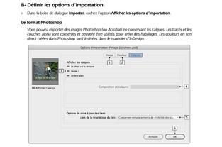 InDesign options d'importation