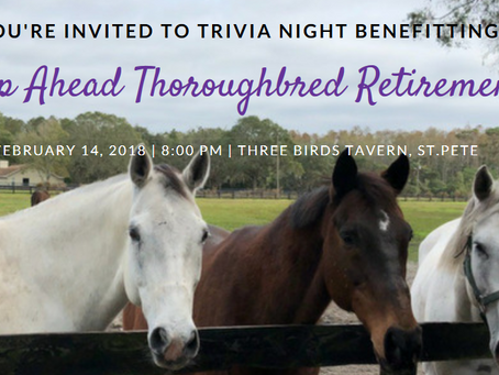 You're Invited to Our Trivia Night Fundraiser