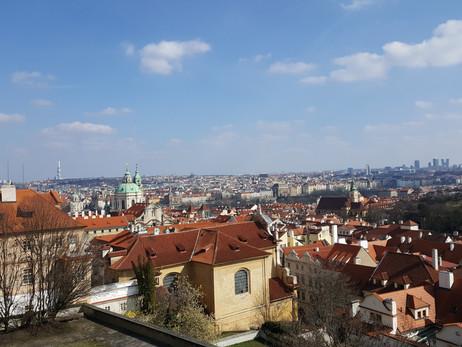 Korruptionsermittlungen: Tschechiens Premier Babiš vor dem Aus?