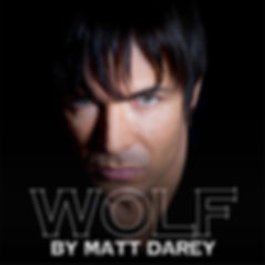 album_cover_wolf_cover_bottom.jpg