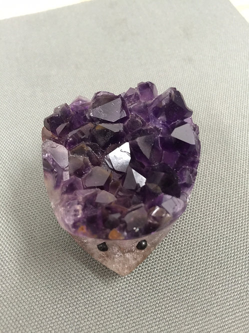 Amethyst Mouse