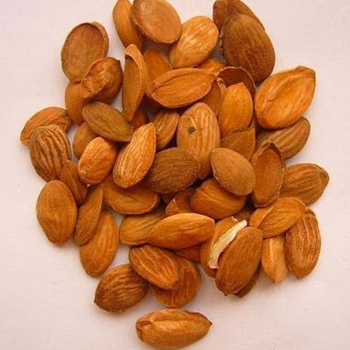 Tao Ren (peach seed)