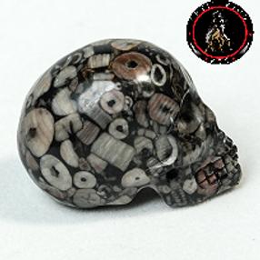 Insect Jasper Skull