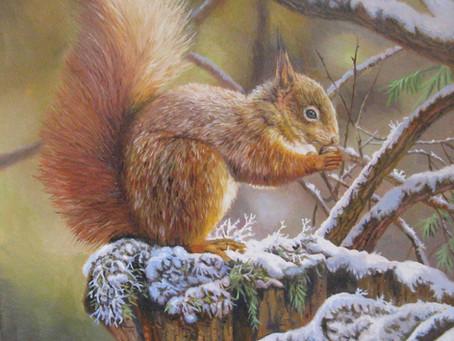 Wildlife Art by Tony Wooding!