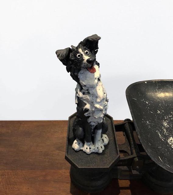 Sitting Sheepdog (102)
