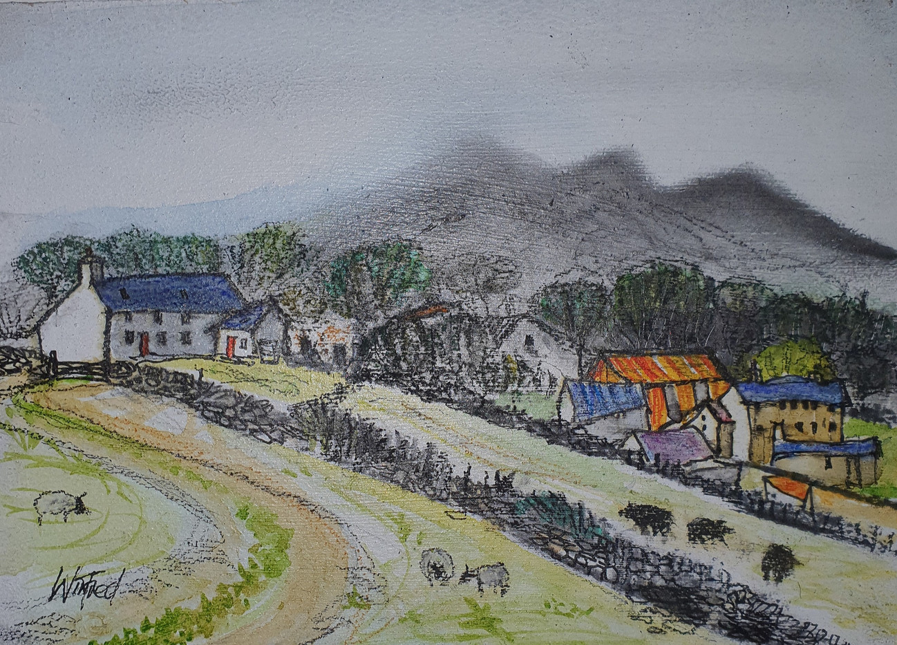 Near Trawsfynydd