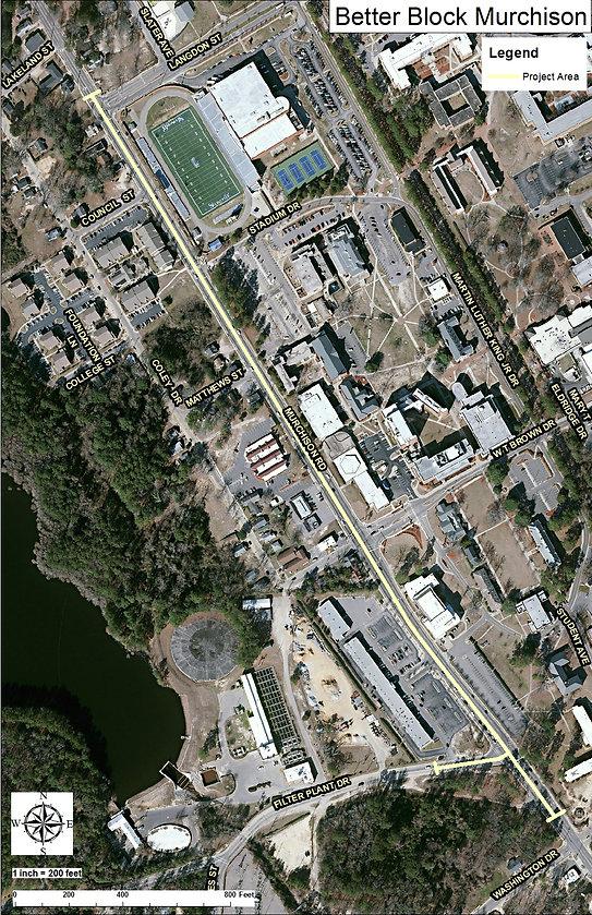 Murchison_Aerial_11x17.jpg