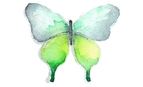 Butterfly_02.png